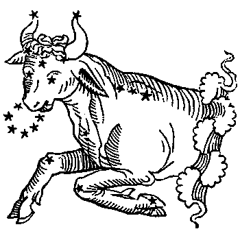 Taurus, illustration from a 1482 edition of a book by Hyginus.