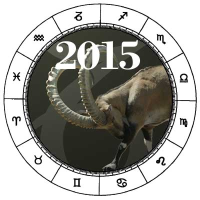 Capricorn 2015 Horoscope