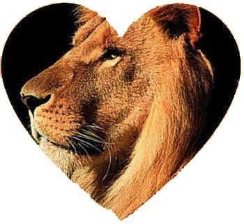 leo zodiac signs love compatibility